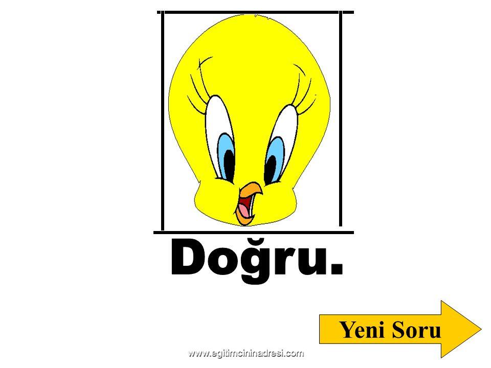 Doğru. Yeni Soru www.egitimcininadresi.com