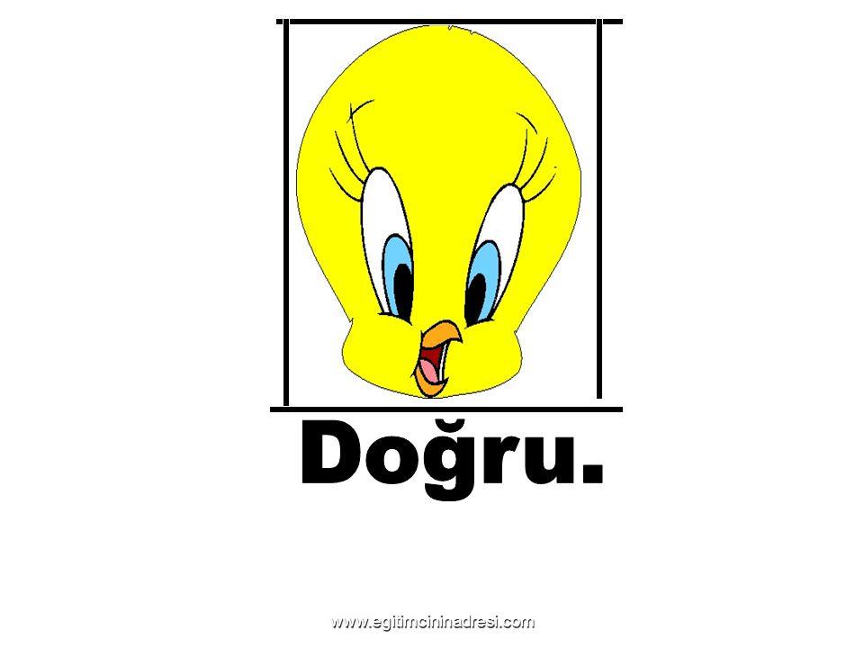 Doğru. www.egitimcininadresi.com