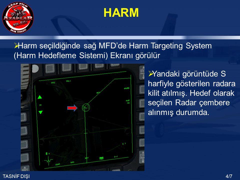 Harm seçildiğinde sağ MFD'de Harm Targeting System (Harm Hedefleme Sistemi) Ekranı görülür