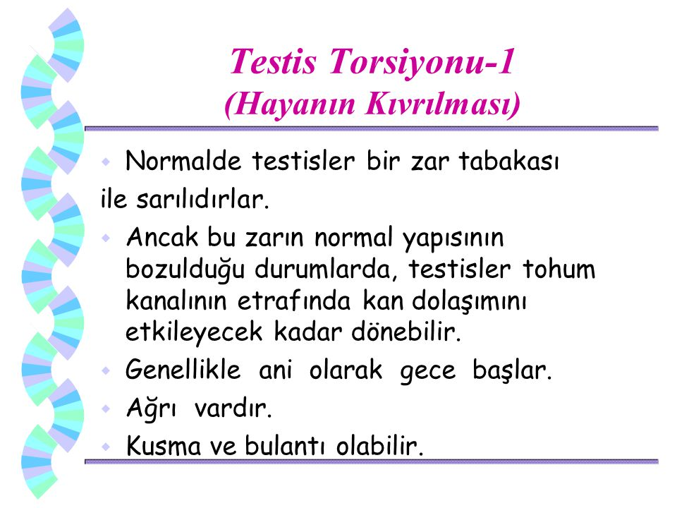 Testis Torsiyonu-1 (Hayanın Kıvrılması)