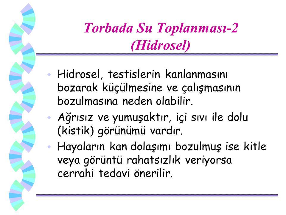 Torbada Su Toplanması-2 (Hidrosel)