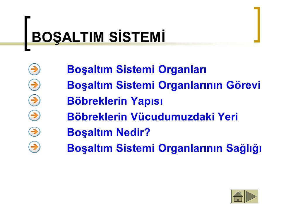 BOŞALTIM SİSTEMİ Boşaltım Sistemi Organları