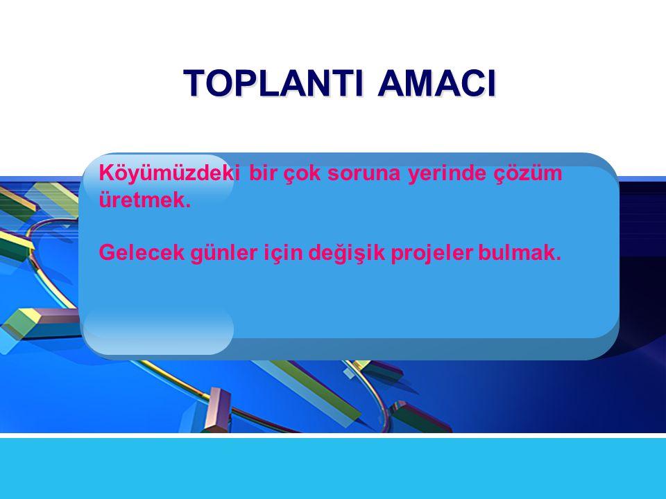 TOPLANTI AMACI Köyümüzdeki bir çok soruna yerinde çözüm üretmek.