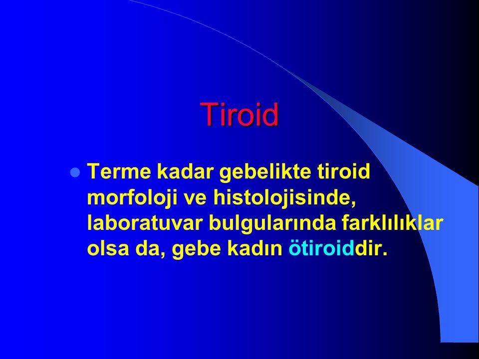 Tiroid Terme kadar gebelikte tiroid morfoloji ve histolojisinde, laboratuvar bulgularında farklılıklar olsa da, gebe kadın ötiroiddir.