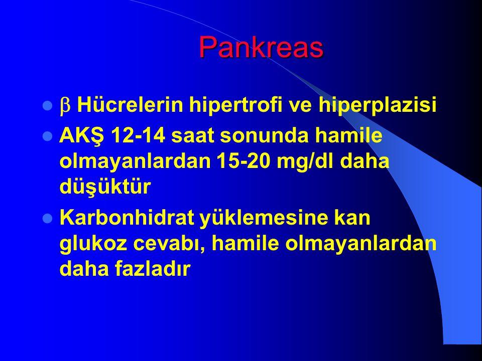 Pankreas  Hücrelerin hipertrofi ve hiperplazisi