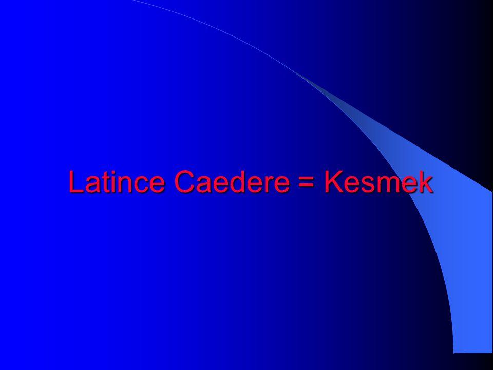 Latince Caedere = Kesmek