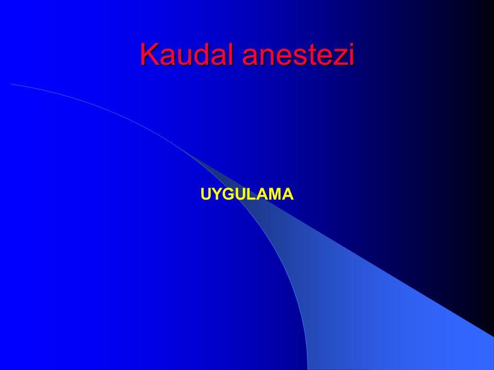 Kaudal anestezi UYGULAMA