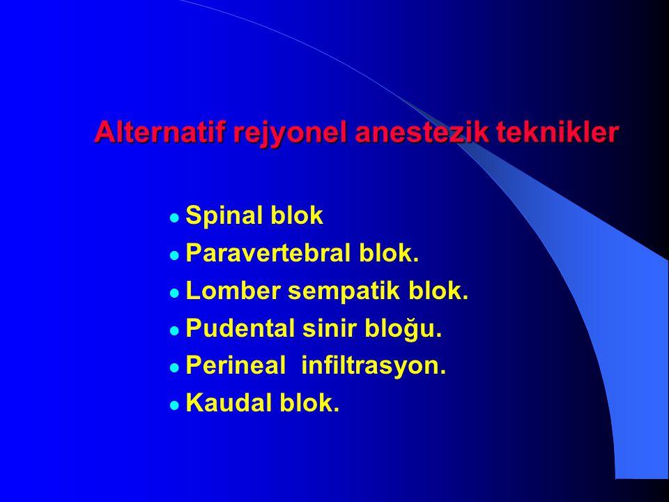 Alternatif rejyonel anestezik teknikler