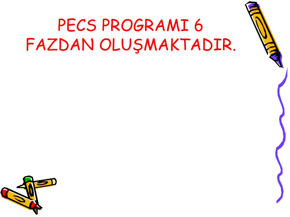 PECS PROGRAMI 6 FAZDAN OLUŞMAKTADIR.