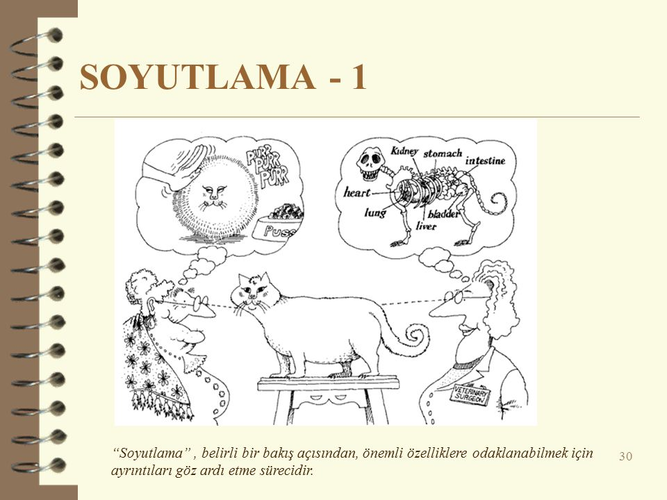 SOYUTLAMA - 1 Soyutlama , belirli bir bakış açısından, önemli özelliklere odaklanabilmek için ayrıntıları göz ardı etme sürecidir.