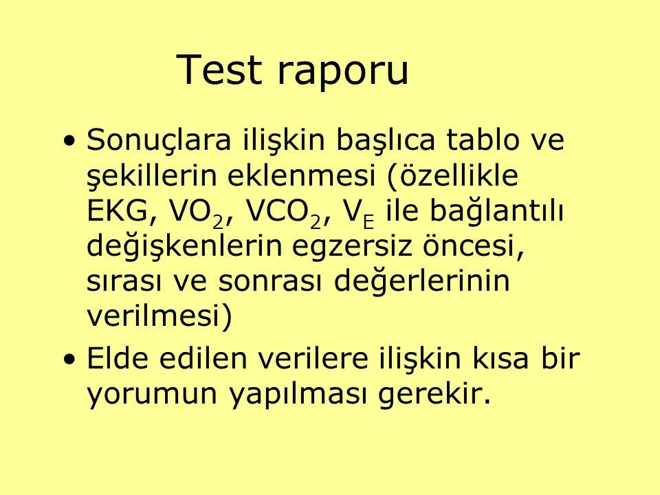 Test raporu