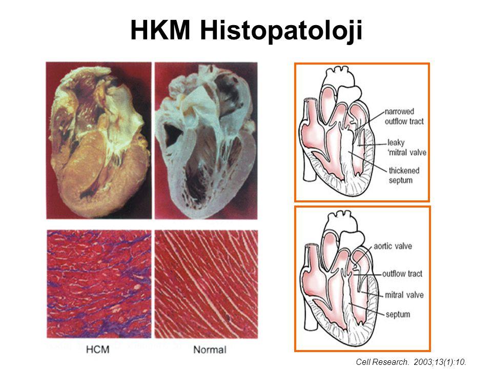 HKM Histopatoloji Cell Research. 2003;13(1):10.