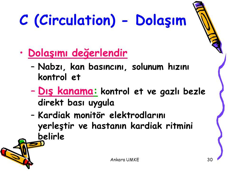 C (Circulation) - Dolaşım
