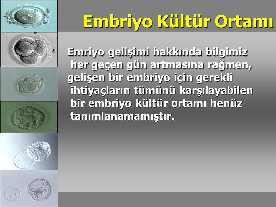 Embriyo Kültür Ortamı Emriyo gelişimi hakkında bilgimiz