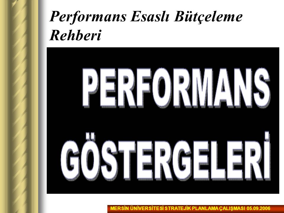 Performans Esaslı Bütçeleme Rehberi