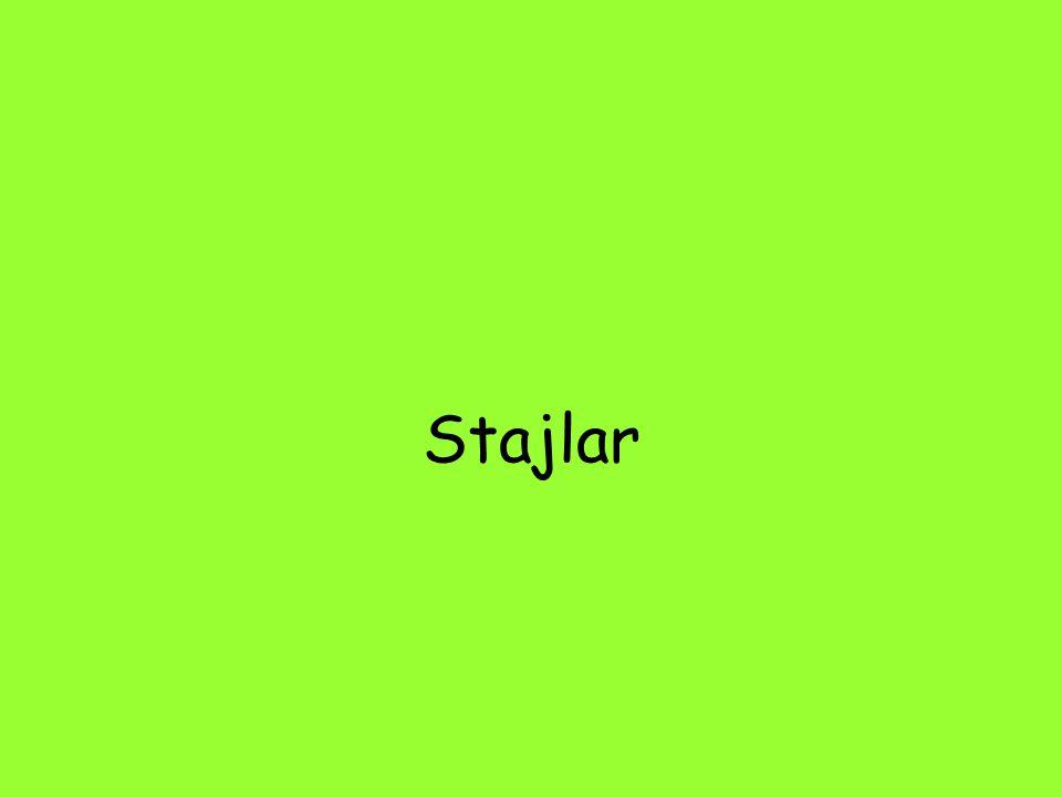 Stajlar
