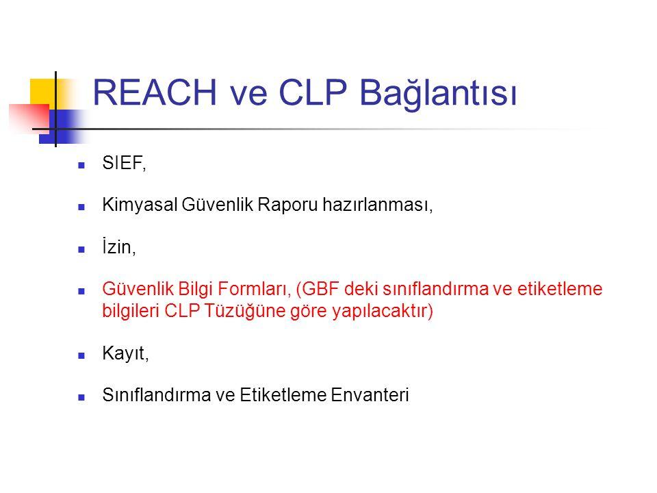 REACH ve CLP Bağlantısı