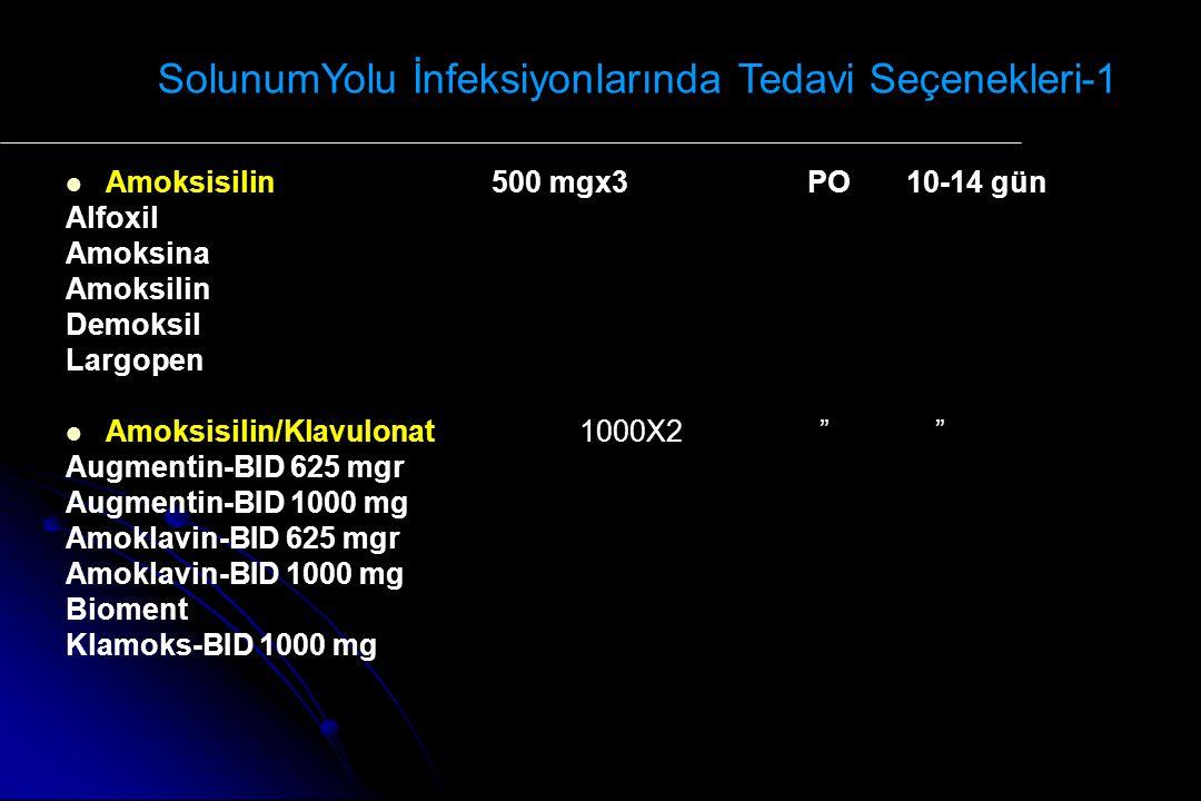 SolunumYolu İnfeksiyonlarında Tedavi Seçenekleri-1