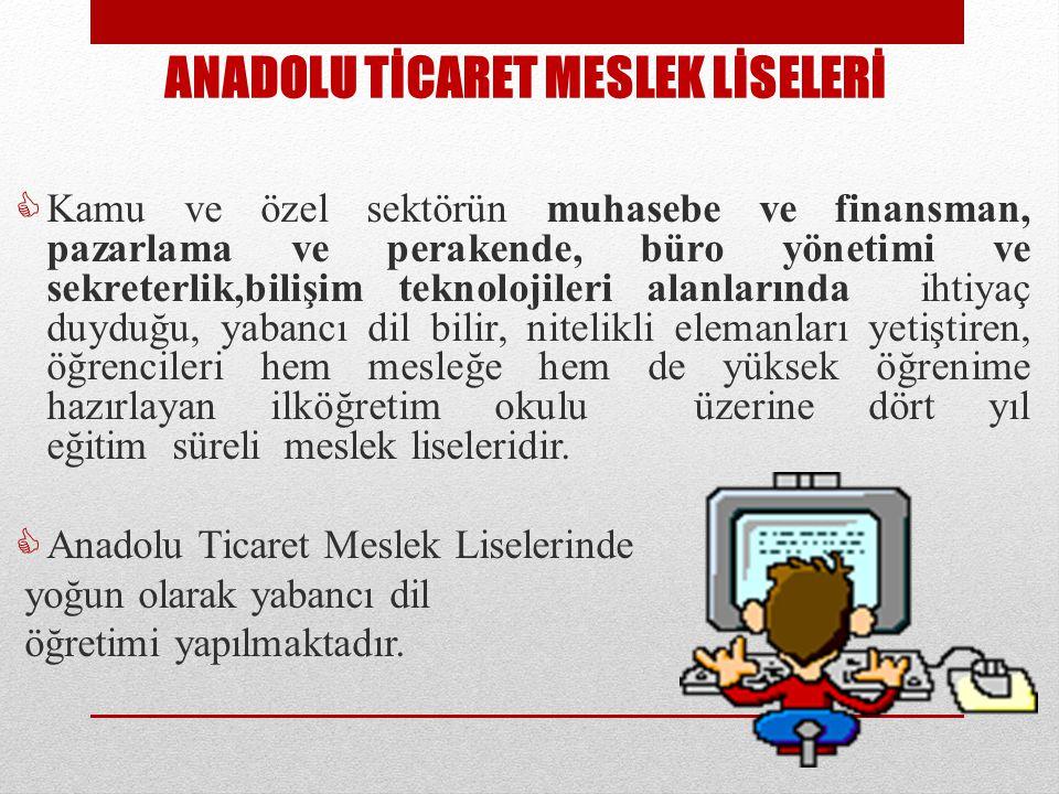 ANADOLU TİCARET MESLEK LİSELERİ