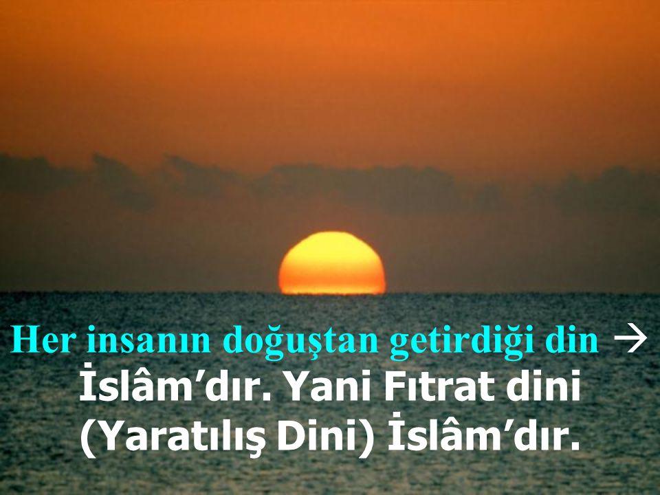 Her insanın doğuştan getirdiği din  İslâm'dır
