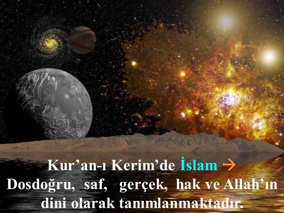 Kur'an-ı Kerim'de İslam 