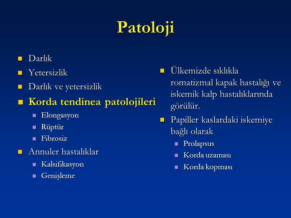 Patoloji Korda tendinea patolojileri Darlık Yetersizlik