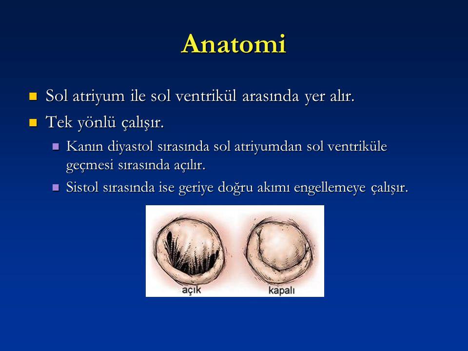 Anatomi Sol atriyum ile sol ventrikül arasında yer alır.