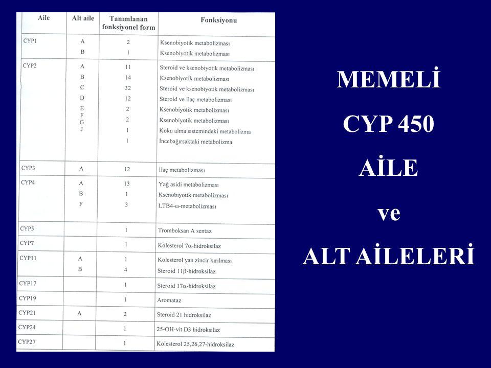 MEMELİ CYP 450 AİLE ve ALT AİLELERİ