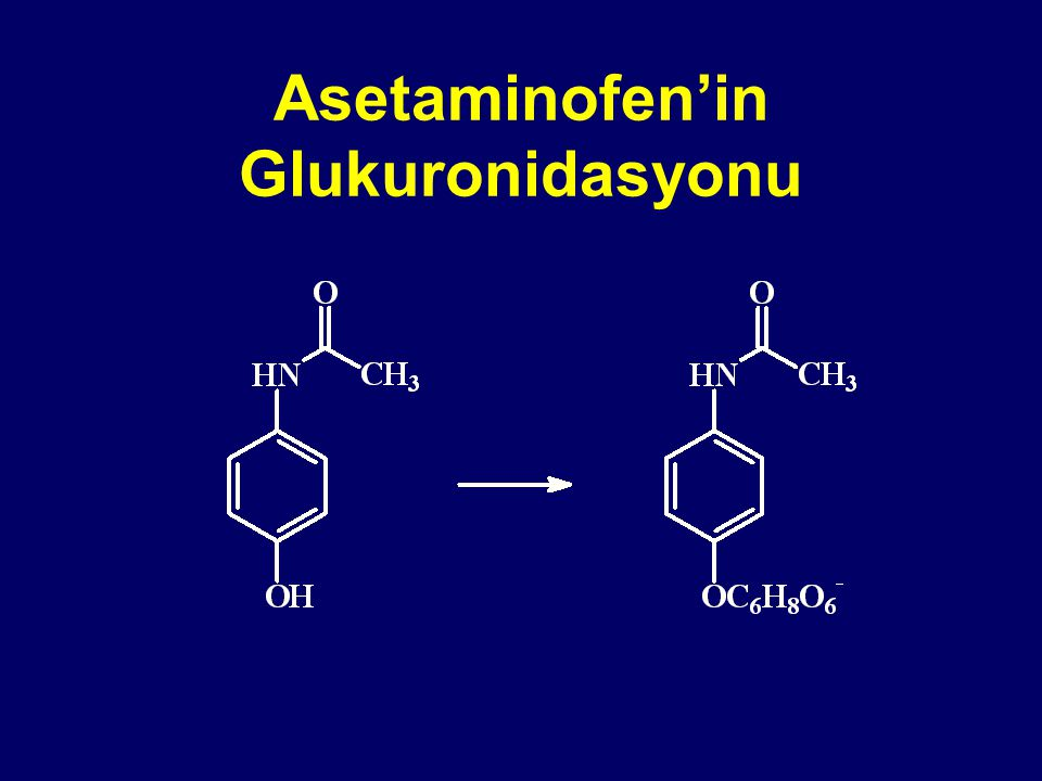 Asetaminofen'in Glukuronidasyonu
