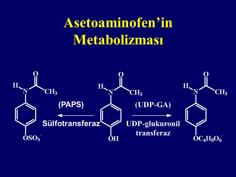 Asetoaminofen'in Metabolizması