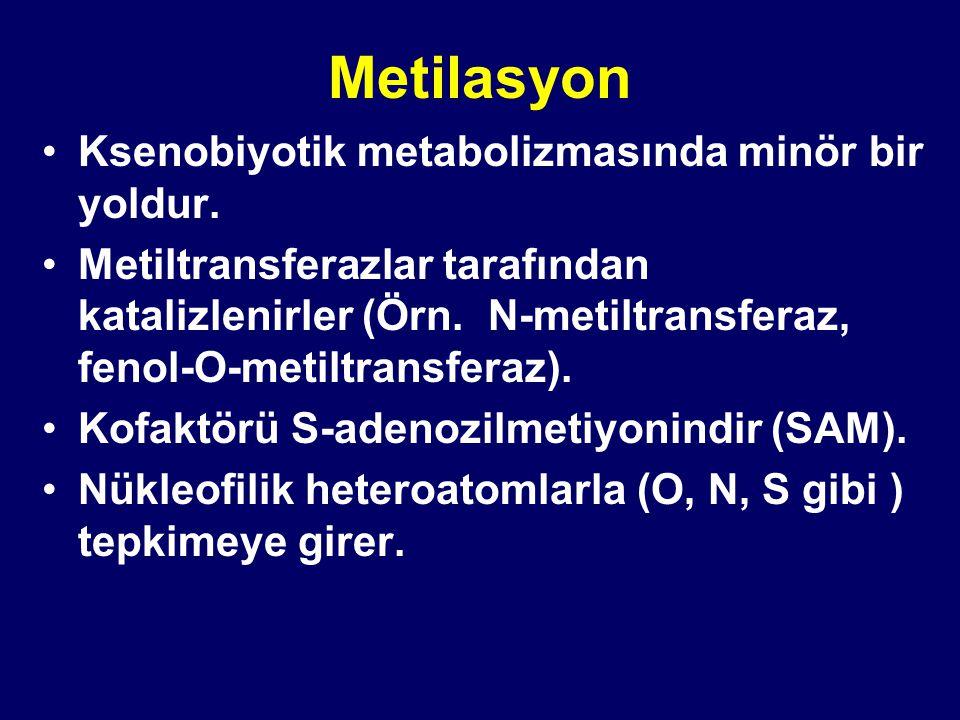 Metilasyon Ksenobiyotik metabolizmasında minör bir yoldur.
