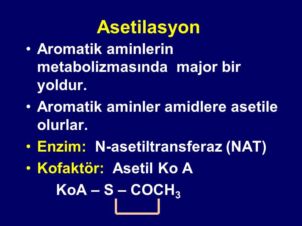 Asetilasyon Aromatik aminlerin metabolizmasında major bir yoldur.