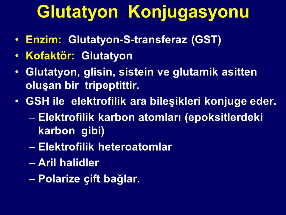 Glutatyon Konjugasyonu