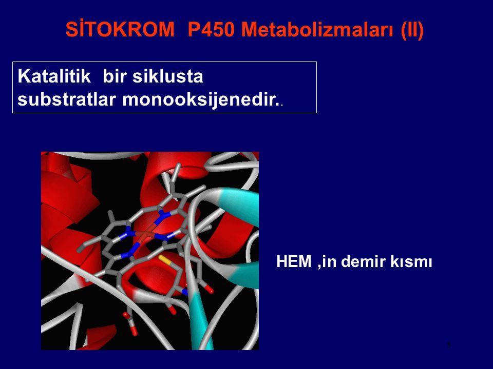 SİTOKROM P450 Metabolizmaları (II)