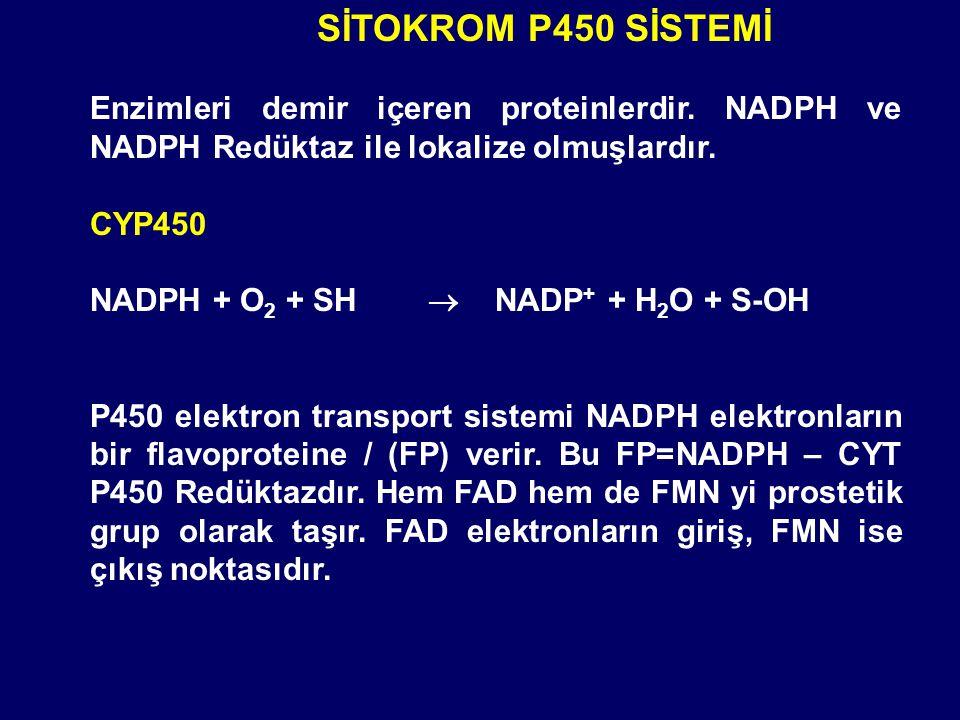 SİTOKROM P450 SİSTEMİ Enzimleri demir içeren proteinlerdir. NADPH ve NADPH Redüktaz ile lokalize olmuşlardır.
