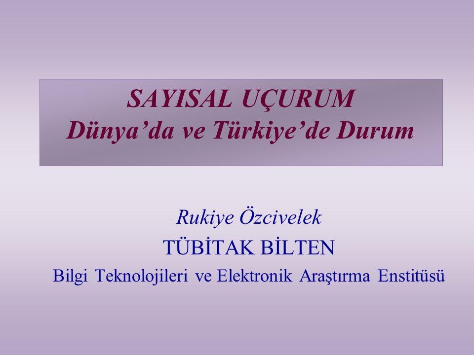 SAYISAL UÇURUM Dünya'da ve Türkiye'de Durum