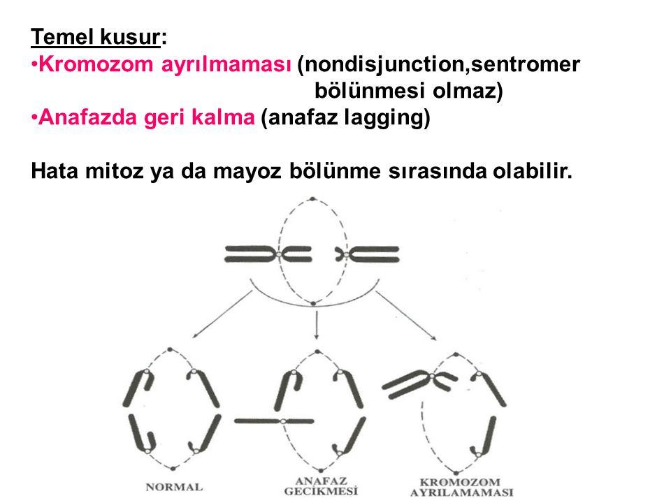 Temel kusur: Kromozom ayrılmaması (nondisjunction,sentromer. bölünmesi olmaz) Anafazda geri kalma (anafaz lagging)