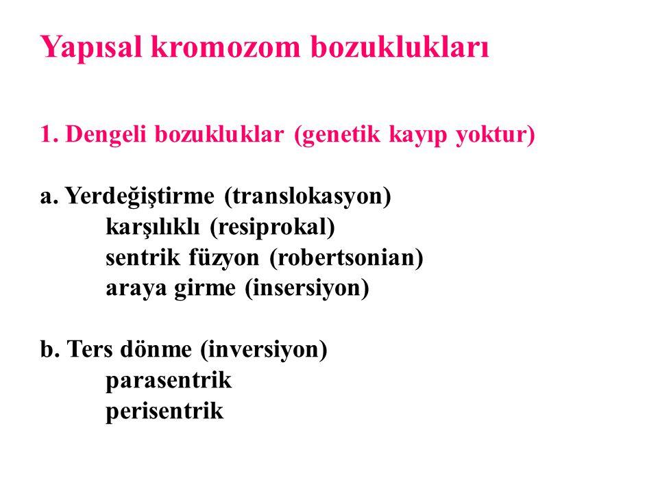 Yapısal kromozom bozuklukları