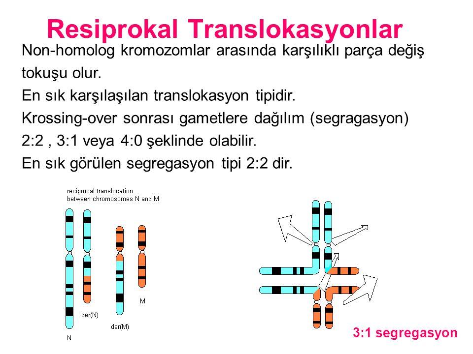 Resiprokal Translokasyonlar