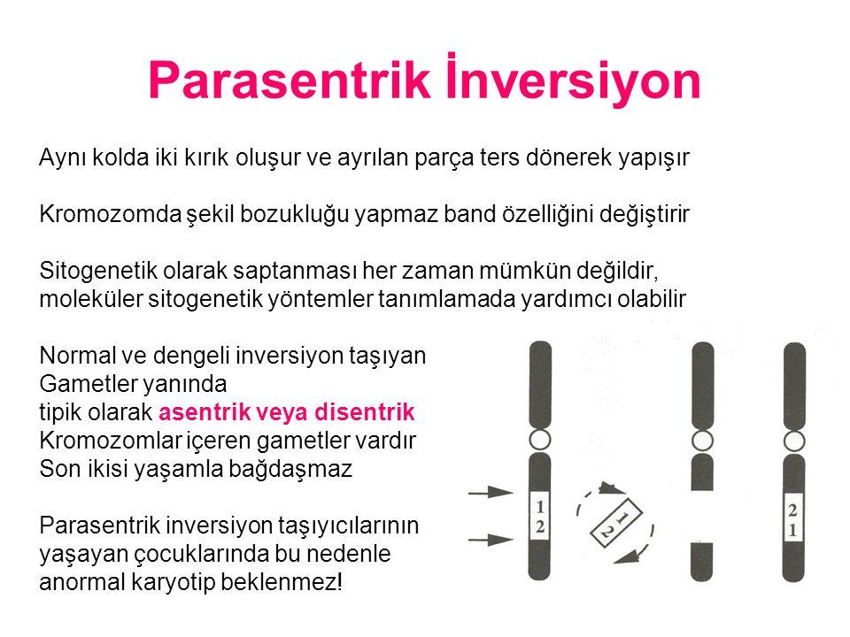 Parasentrik İnversiyon