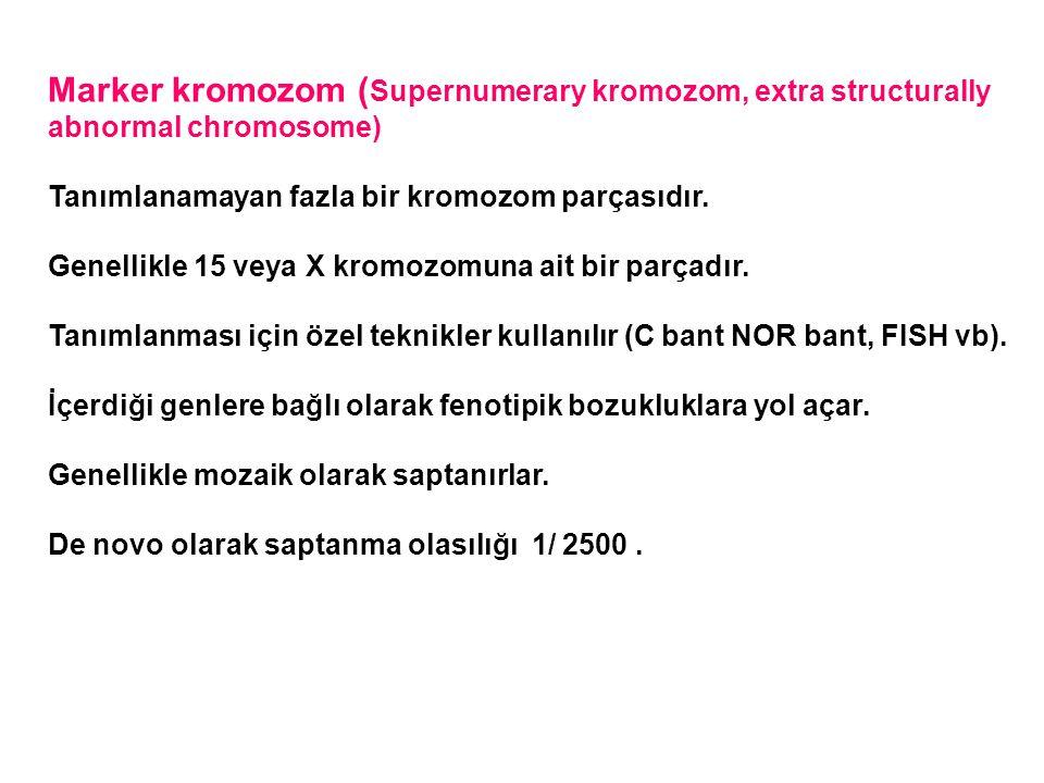 Marker kromozom (Supernumerary kromozom, extra structurally