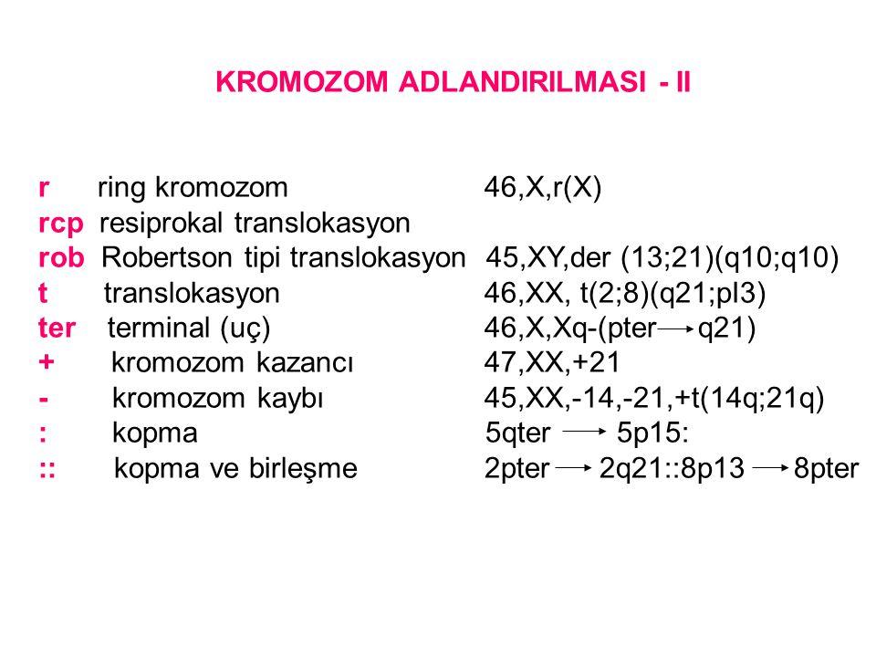 KROMOZOM ADLANDIRILMASI - II
