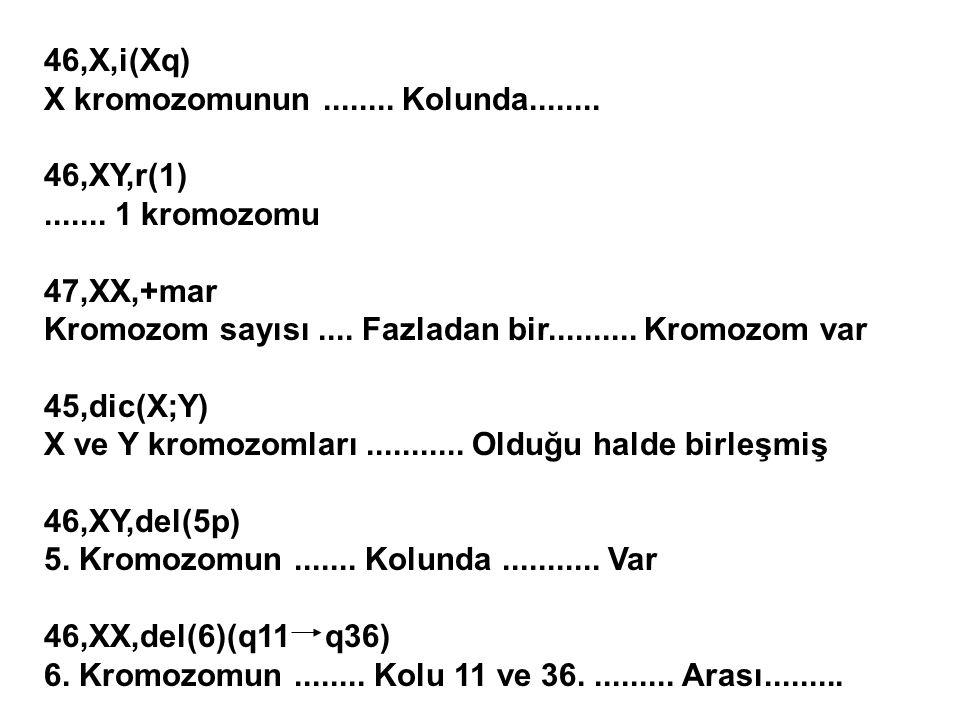 46,X,i(Xq) X kromozomunun ........ Kolunda........ 46,XY,r(1) ....... 1 kromozomu. 47,XX,+mar.
