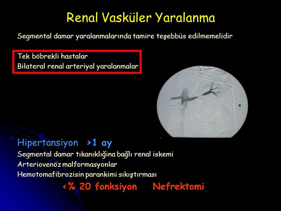 Renal Vasküler Yaralanma