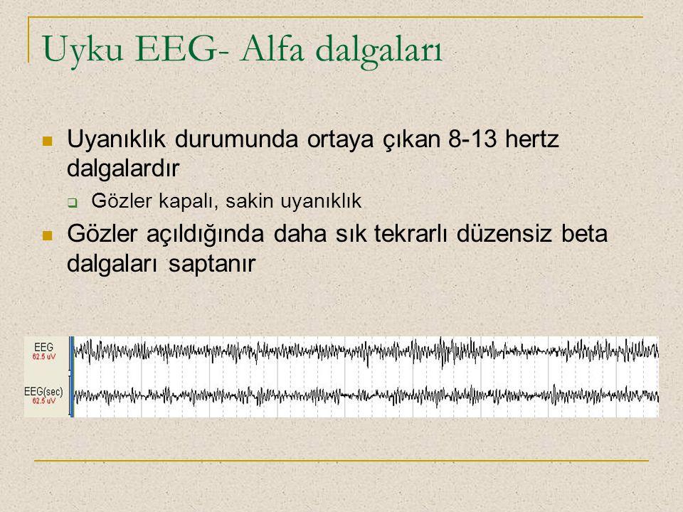 Uyku EEG- Alfa dalgaları