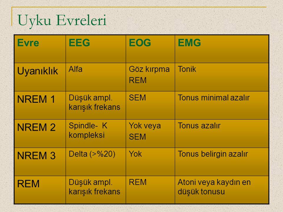 Uyku Evreleri Evre EEG EOG EMG Uyanıklık NREM 1 NREM 2 NREM 3 Alfa