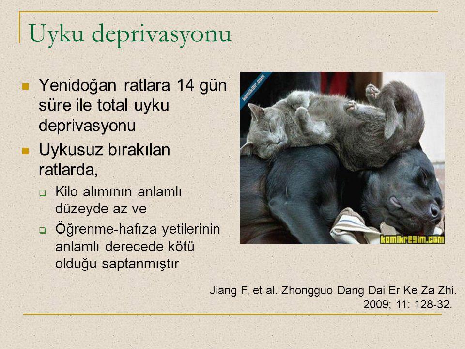 Uyku deprivasyonu Yenidoğan ratlara 14 gün süre ile total uyku deprivasyonu. Uykusuz bırakılan ratlarda,