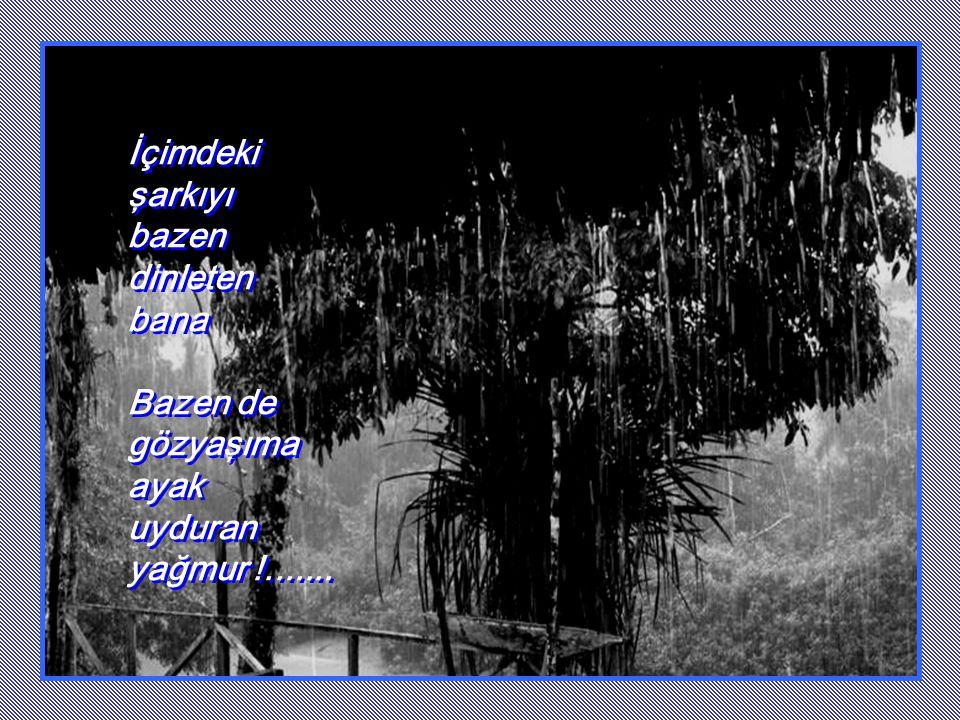 İçimdeki şarkıyı bazen dinleten bana Bazen de gözyaşıma ayak uyduran yağmur !.......
