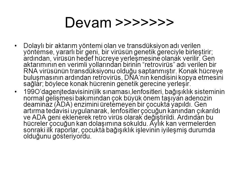Devam >>>>>>>