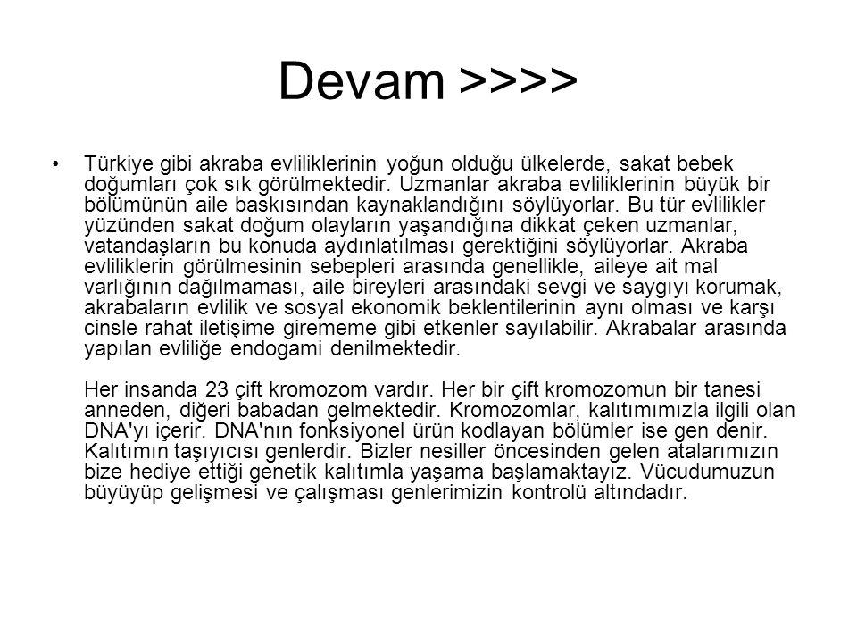 Devam >>>>